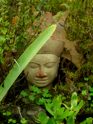 gardenbuddha.jpg