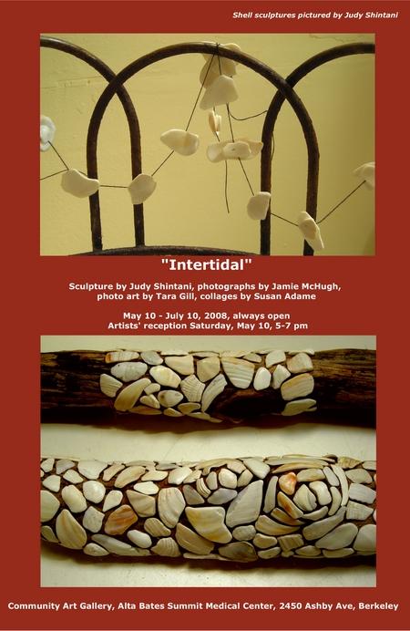 intertidalpostflat